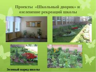 Проекты «Школьный дворик» и озеленение рекреаций школы Зеленый наряд школы