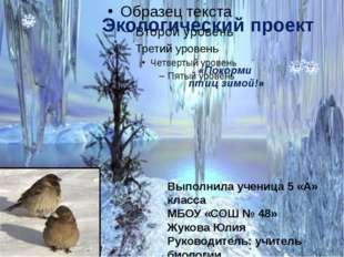 Выполнила ученица 5 «А» класса МБОУ «СОШ № 48» Жукова Юлия Руководитель: учи