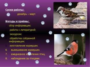 Сроки работы: декабрь – март. Методы и приёмы: сбор информации; работа с лит