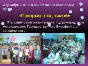 3 декабря 2012 г. в нашей школе стартовала акция «Покорми птиц зимой». Эта а