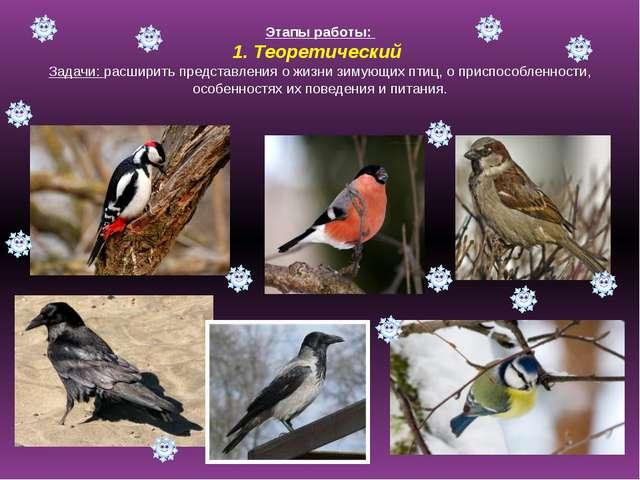 Этапы работы: 1. Теоретический Задачи: расширить представления о жизни зимующ...