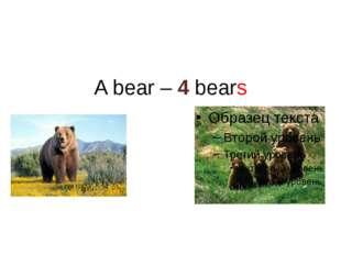 A bear – 4 bears
