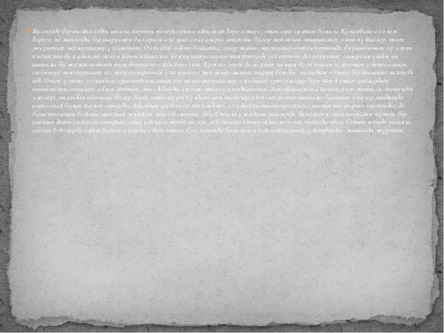 Бұл кезде бір тайпа елдің анасы, көптің тілеуқорына айналған Зере әжеге, оның...