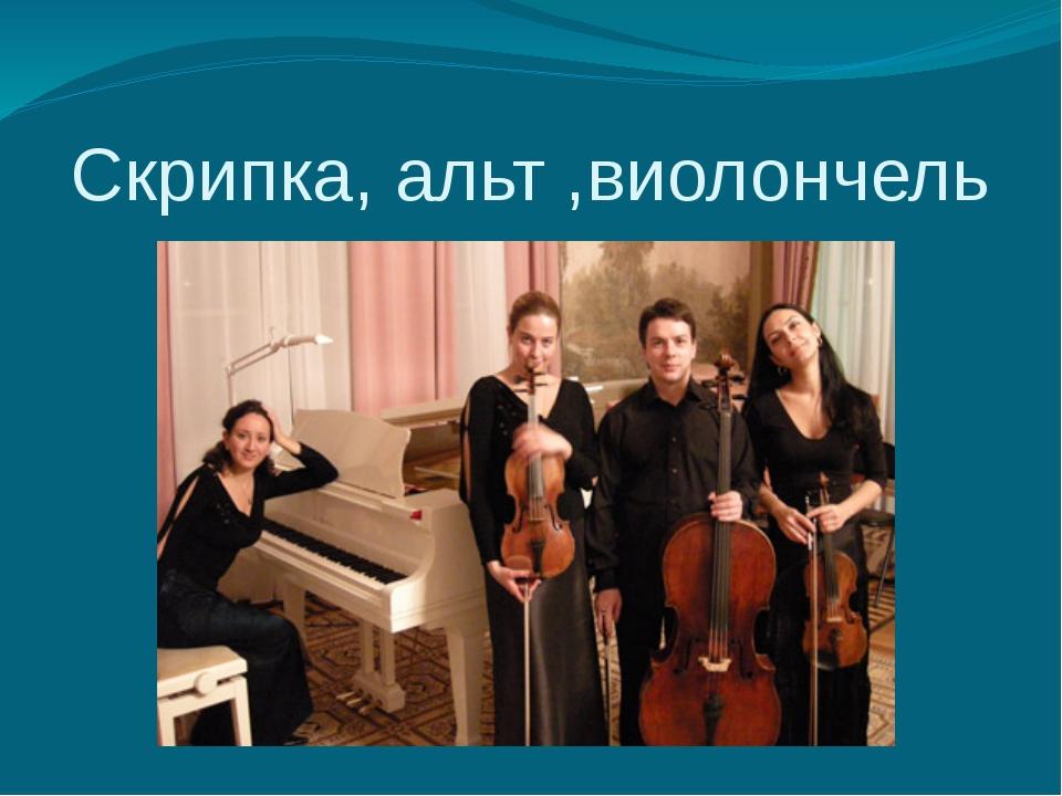 Скрипка, альт ,виолончель