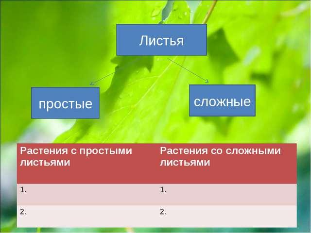 Листья простые сложные Растения с простыми листьями Растения со сложными лис...