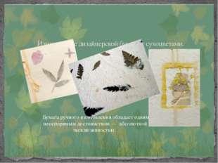 Изготовление дизайнерской бумаги с сухоцветами. Бумага ручного изготовления