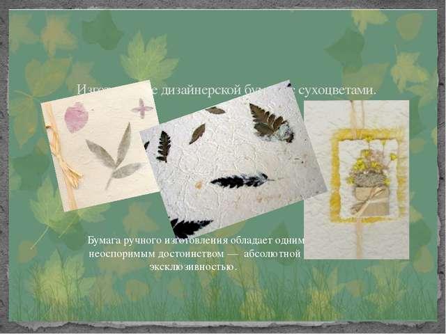 Изготовление дизайнерской бумаги с сухоцветами. Бумага ручного изготовления...