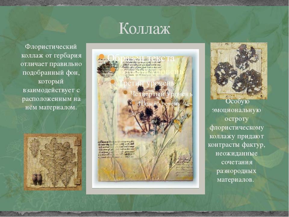 Коллаж Флористический коллаж от гербария отличает правильно подобранный фон,...