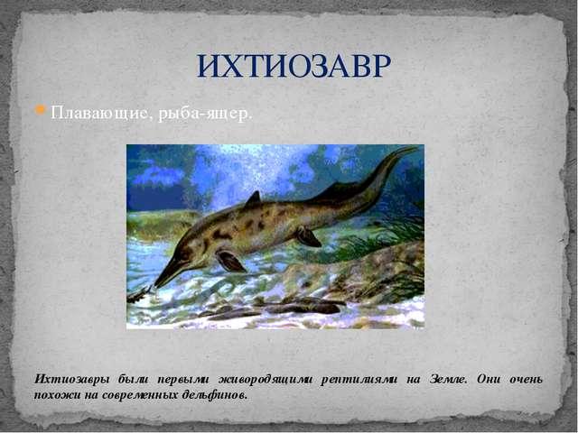 Плавающие, рыба-ящер. Ихтиозавры были первыми живородящими рептилиями на Земл...