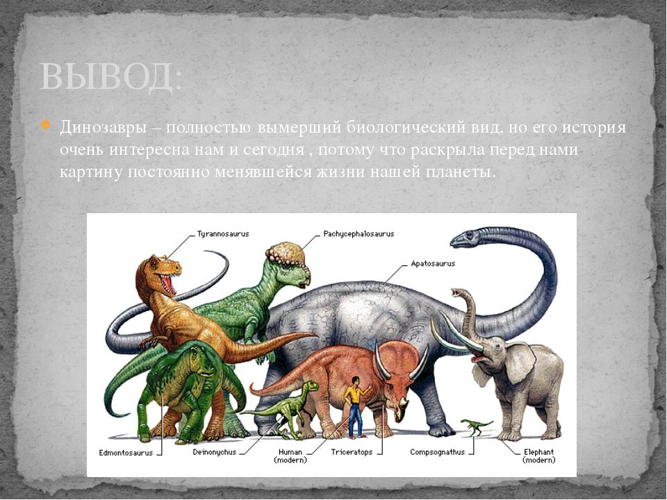 Динозавры – полностью вымерший биологический вид, но его история очень интере...
