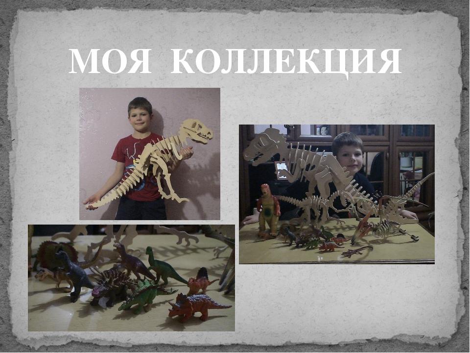 МОЯ КОЛЛЕКЦИЯ