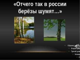 «Отчего так в россии берёзы шумят…»