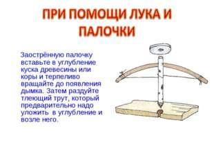 Заострённую палочку вставьте в углубление куска древесины или коры и терпели