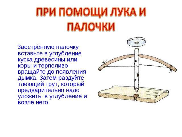 Заострённую палочку вставьте в углубление куска древесины или коры и терпели...