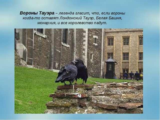 Вороны Тауэра – легенда гласит, что, если вороны когда-то оставят Лондонский...