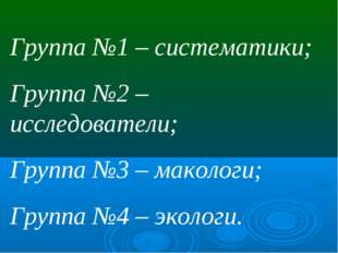 Группа №1 – систематики; Группа №2 – исследователи; Группа №3 – макологи; Гру