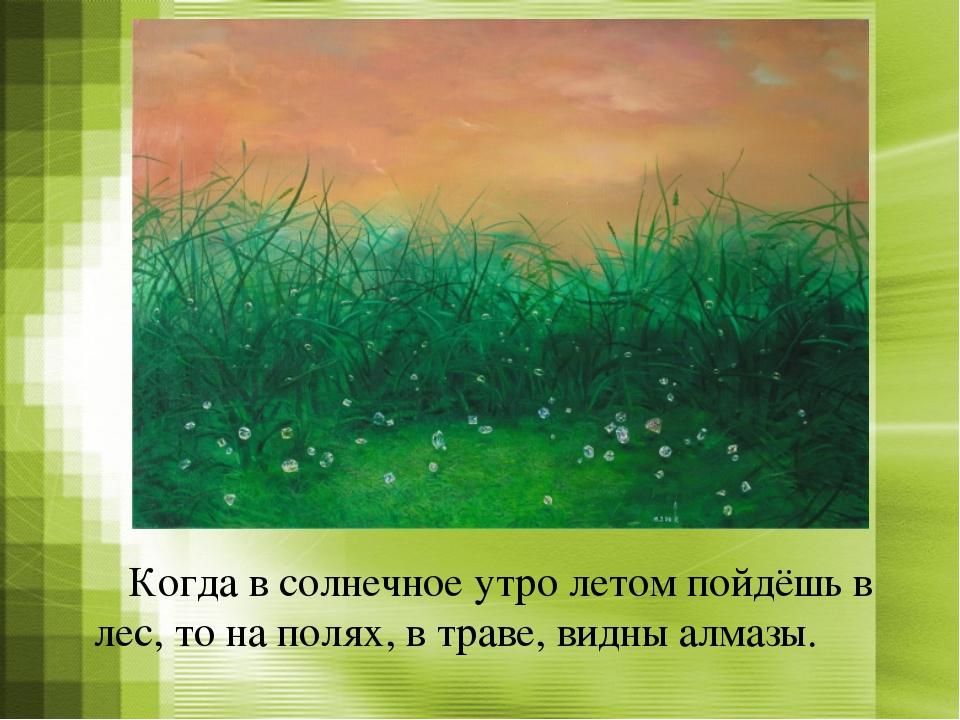 Когда в солнечное утро летом пойдёшь в лес, то на полях, в траве, видны алма...