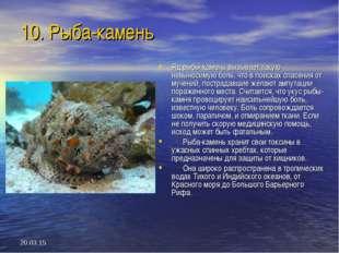 * 10. Рыба-камень Яд рыбы-камень вызывает такую невыносимую боль, что в поиск