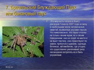 * 7. Бразильский Блуждающий Паук или банановый паук Эта мерзость попала в Кни