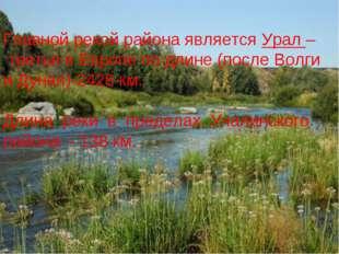 Главной рекой района является Урал – третья в Европе по длине (после Волги и