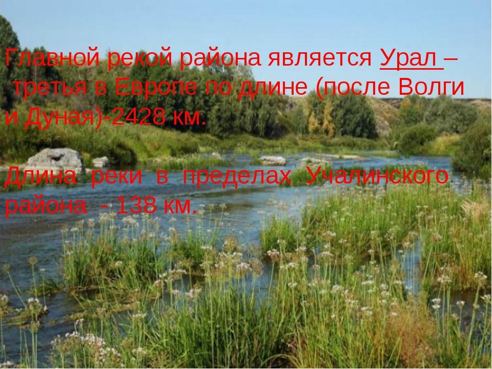 Главной рекой района является Урал – третья в Европе по длине (после Волги и...