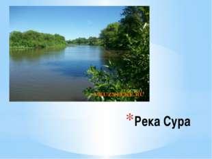Река Сура