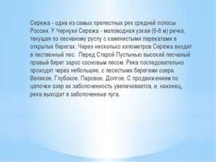 Сережа - одна из самых прелестных рек средней полосы России. У Чернухи Сереж