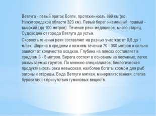 Ветлуга - левый приток Волги, протяженность 889 км (по Нижегородской области