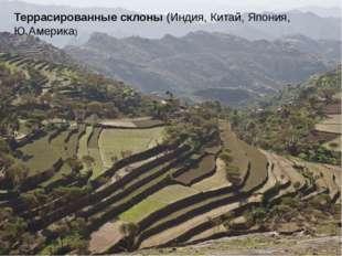 Террасированные склоны (Индия, Китай, Япония, Ю.Америка)