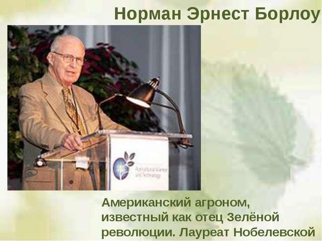 Американский агроном, известный как отец Зелёной революции. Лауреат Нобелевск...
