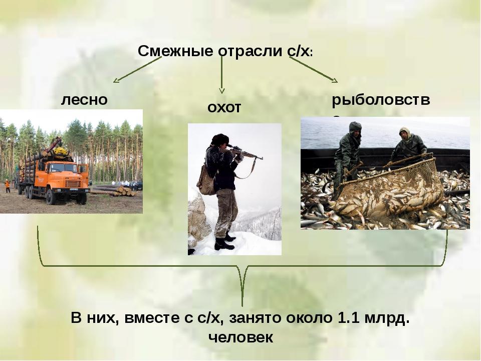 Смежные отрасли с/х: лесное охота рыболовство В них, вместе с с/х, занято око...