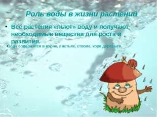 Роль воды в жизни растений Все растения «пьют» воду и получают необходимые ве