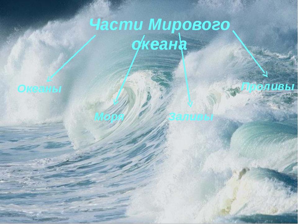 Части Мирового океана Моря Проливы Заливы Океаны