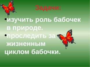 Задачи: изучить роль бабочек в природе. проследить за жизненным циклом бабочки.
