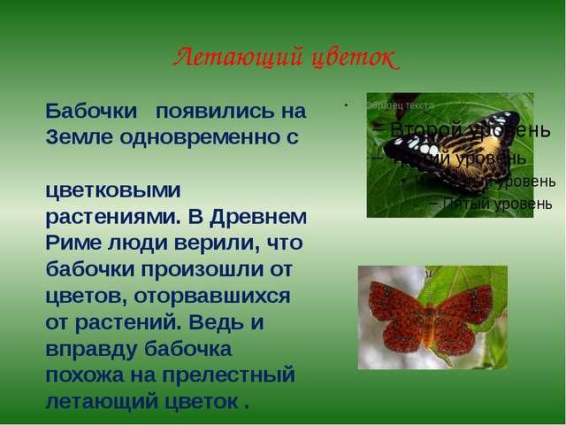 Летающий цветок Бабочки появились на Земле одновременно с цветковыми растения...