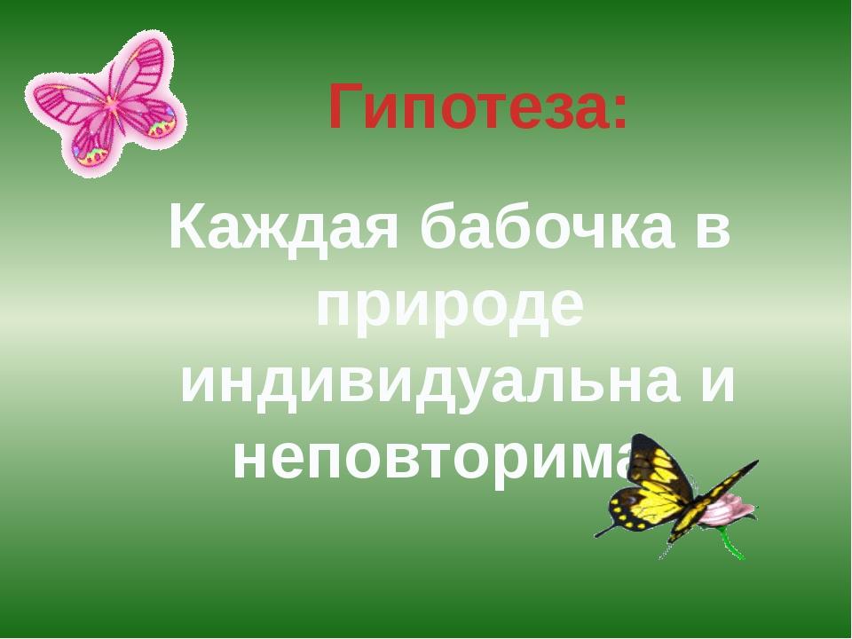 Каждая бабочка в природе индивидуальна и неповторима.  Гипотеза:
