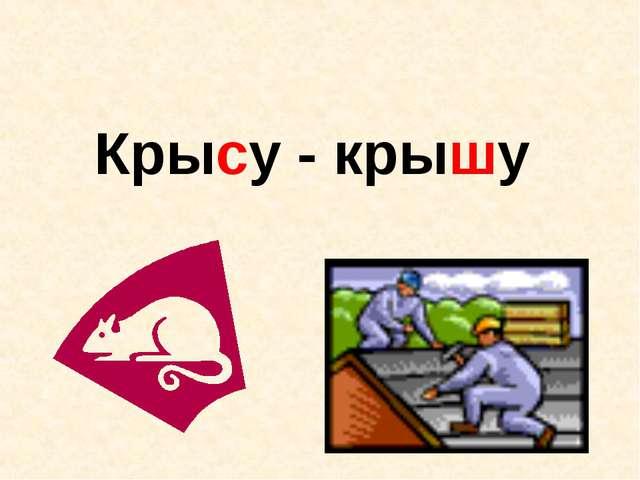 Крысу - крышу