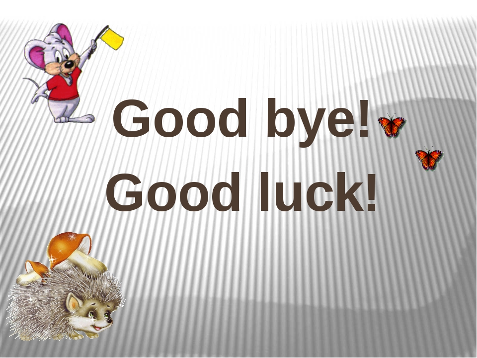 Good bye! Good luck!
