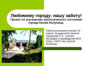 Любимому городу- нашу заботу! Проект по улучшению экологического состояния го