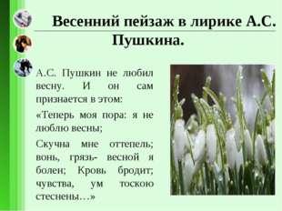 Весенний пейзаж в лирике А.С. Пушкина. А.С. Пушкин не любил весну. И он сам