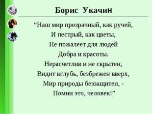 """Борис Укачин """"Наш мир прозрачный, как ручей, И пестрый, как цветы, Не пожале"""