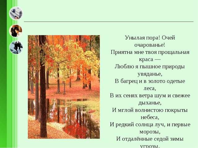 Унылая пора! Очей очарованье! Приятна мне твоя прощальная краса — Люблю я пыш...