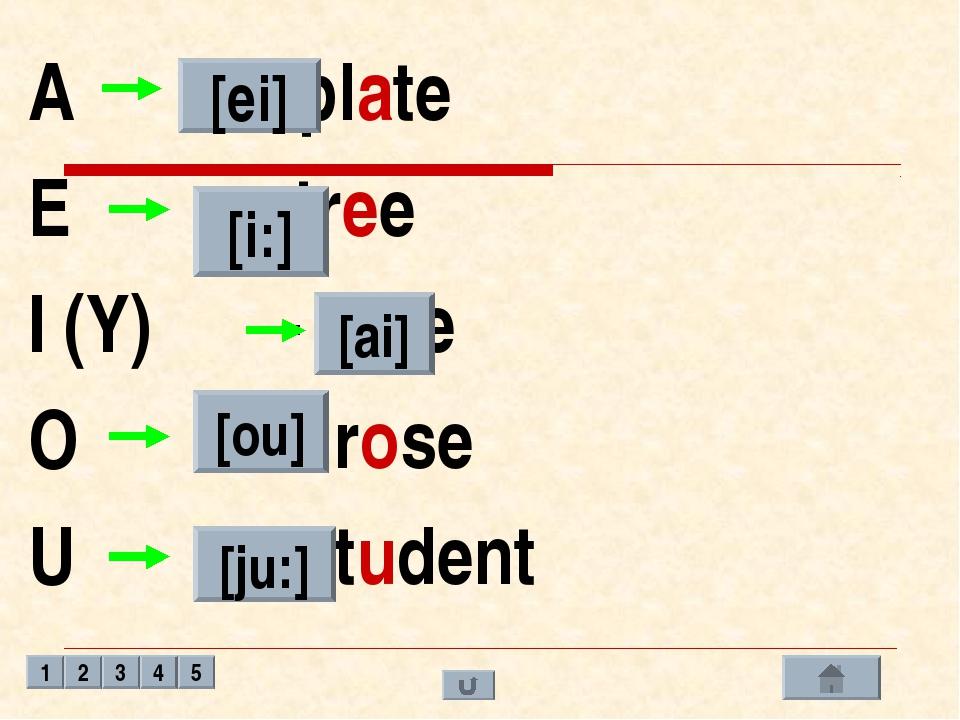 A - plate E - tree I (Y) - nine O – rose U - student [ei] [i:] [ai] [ou] [ju:...