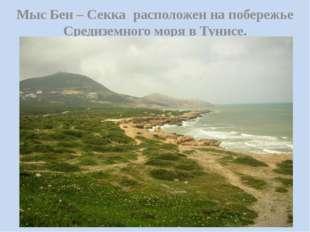 Мыс Бен – Секка расположен на побережье Средиземного моря в Тунисе.