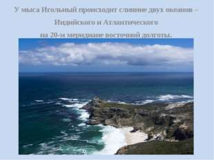 У мыса Игольный происходит слияние двух океанов – Индийского и Атлантического