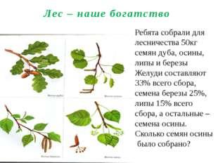 Лес – наше богатство Ребята собрали для лесничества 50кг семян дуба, осины, л