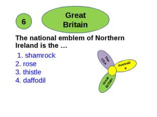 The national emblem of Northern Ireland is the … 1. shamrock 2. rose 3. this