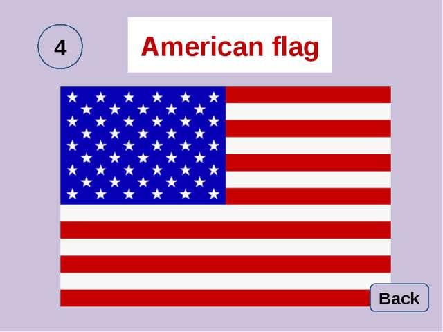 American flag Back 4