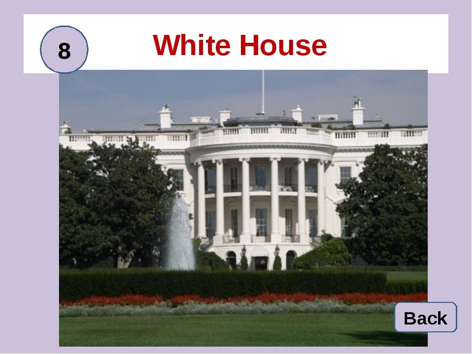 White House Back 8