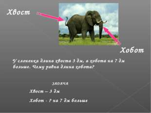 Хвост Хобот  Хвост – 3 дм Хобот - ? на 7 дм больше У слоненка длина хвоста